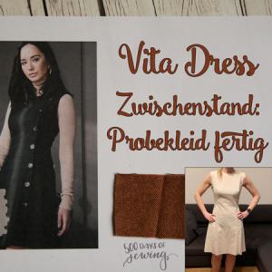 Zwischenstand Vita Dress